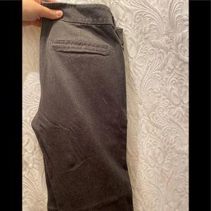 Pants - Pixie Dress Pant